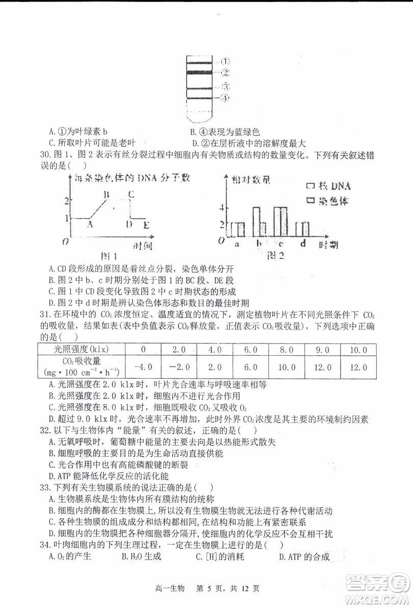 哈三中2018-2019学年度高一上期末测试生物试卷及答案