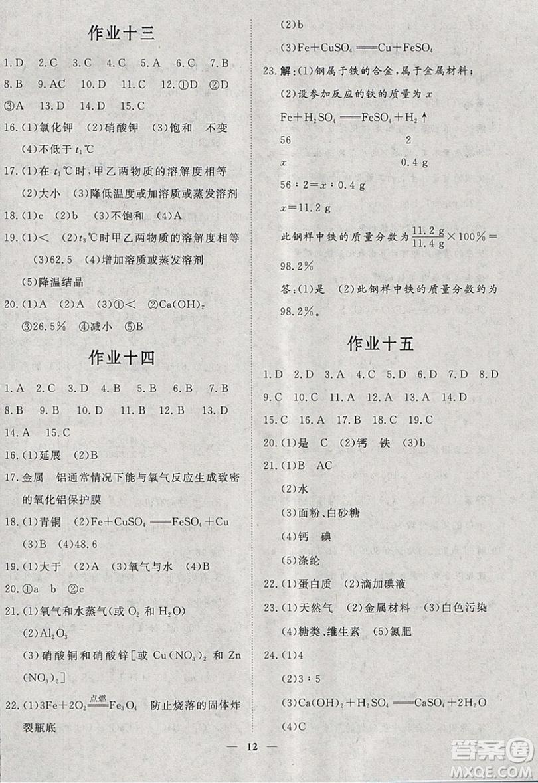 文轩图书2019寒假假期生活指导九年级化学答案