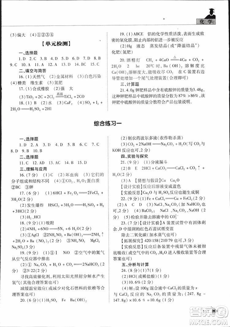 五四制2019年初中伴你学习新课程丛书九年级下册化学鲁教版参考答案
