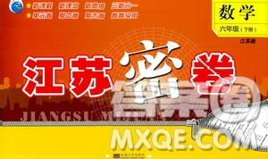 2019春江苏密卷数学六年级下册江苏版参考答案