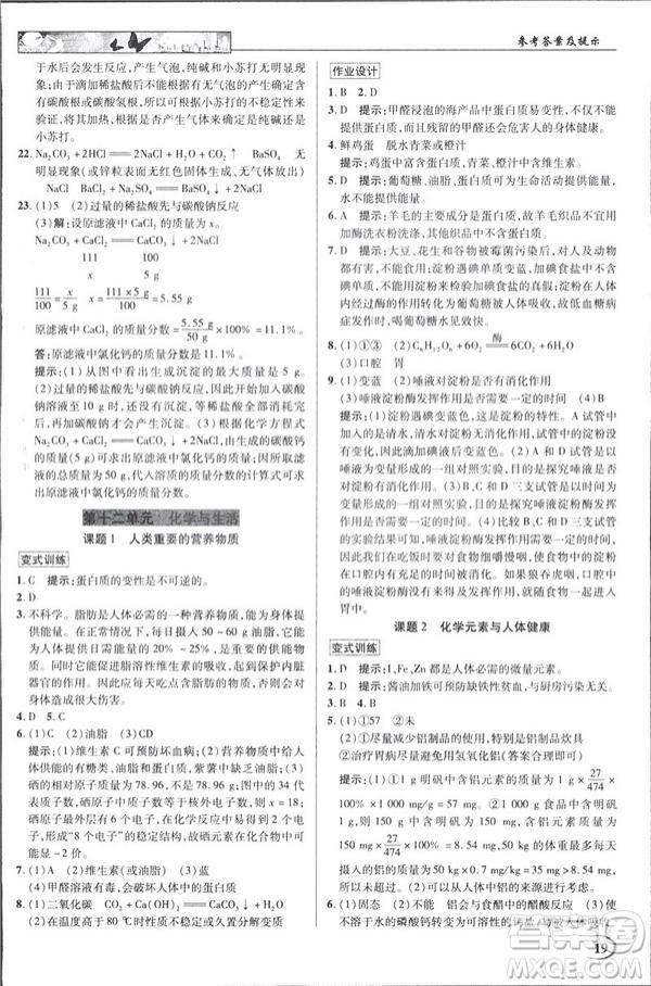2019春新世纪英才教程人教版中学奇迹课堂九年级化学下册答案