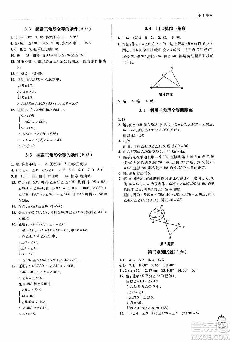 金博士2019年轻巧夺冠七年级数学下册青岛专用参考答案