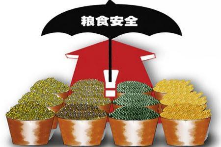 粮食安全的作文 关于粮食安全的作文